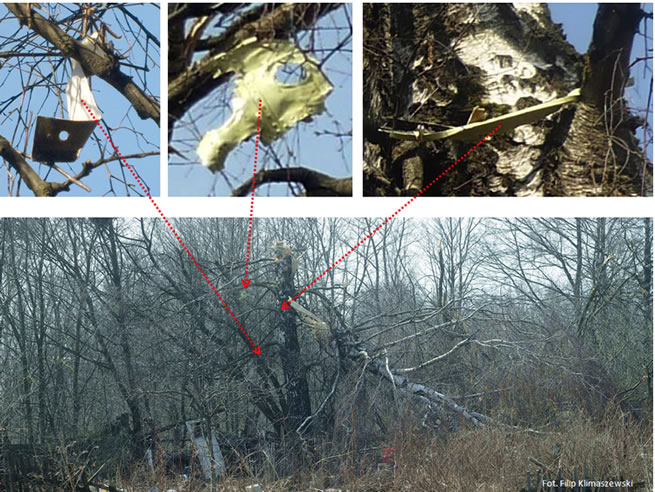 "Identified pieces of the detachable left wing part hanging on April 10, 2010 on the branches of (Bodin) birch tree claimed to have cut the wing (noted ""bb"")."